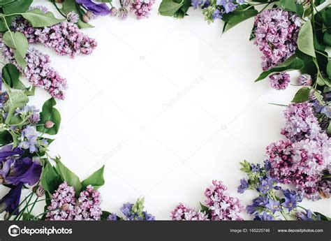 cornici fiori cornice di fiori di lill 224 foto stock 169 maximleshkovich