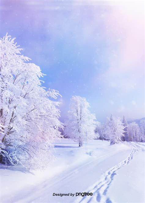 Background Images Snow by Snow In Winter Forest Background In The