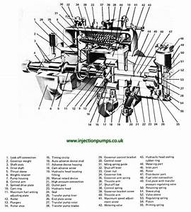 Deutz Injector Pump Diagram