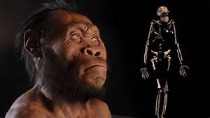 New Human Ancestor Discovered: Homo naledi (EXCLUSIVE VIDEO)