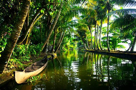 top  kerala backwaters stock  pictures