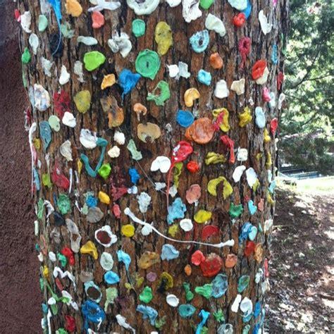 images  colorado memories  pinterest
