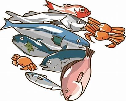 Clipart Seafood Fish Clip Shellfish Raw Cliparts
