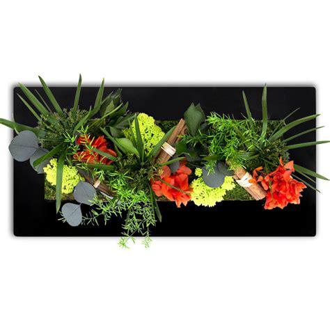 plantes vertes pour cadre v 233 g 233 tal