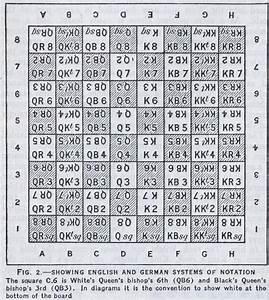 Diagram  Chess Piece Moves Diagram