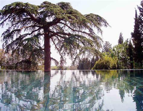 chambre d hote le luc en provence les jardins et la piscine chauffée des chambres d 39 hotes au