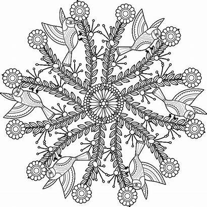 Coloring Pages Garden Mandala Adults Fun