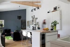 Deco Piece A Vivre Avec Cuisine Ouverte : comment bien choisir son lot de cuisine en fonction de ~ Premium-room.com Idées de Décoration