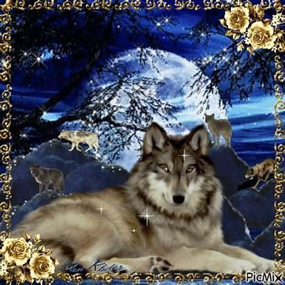 Picmix Peinture Loups Lobo Guardado Desde