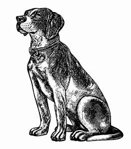 free vintage dog clipart, black and white clip art ...