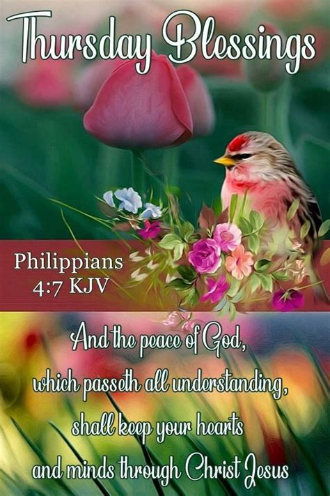 This article might be for you keep reading with me lets dive in Pin by Judiann on Blessings for Thursday!   Tuesday quotes ...