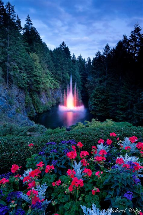 ross fountain  night photo vancouver island bc