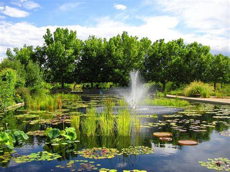 denver botanic gardens denver botanical gardens proflowers
