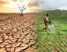 research programme   vulnerable dryland farmers