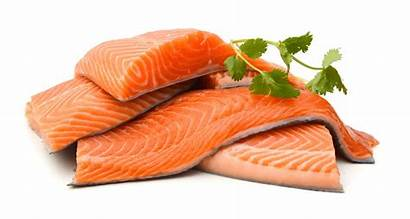 Fish Salmon Raw Fillet Norwegian Seafood Uncooked