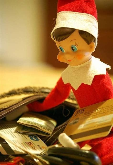 pics  inappropriate elf   shelf  wild