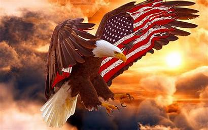 Eagle Bald Flag American Wallpapers Backgrounds Itl