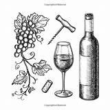 Wine Bottle Glass Vino Grape Bottiglia Glas Bouteille Vin Branches Drawing Still Grapes Drawn Uva Verre Raisin Rami Isolated Cork sketch template