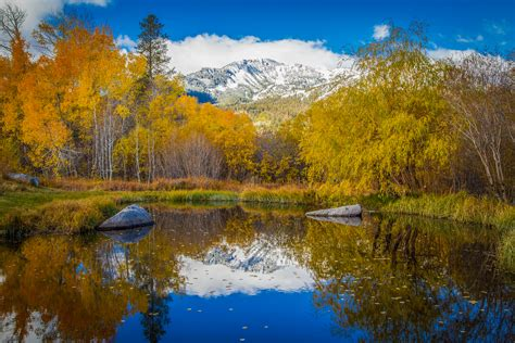 Mammoth Lakes Is Go Now! Golden – California Fall Color