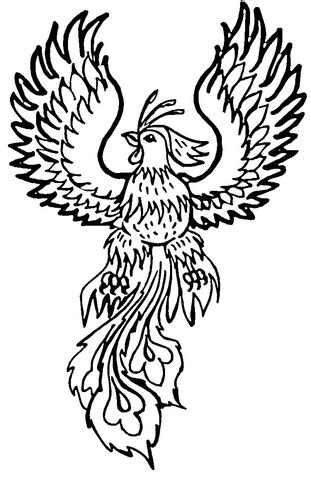 phoenix coloring page  printable coloring pages