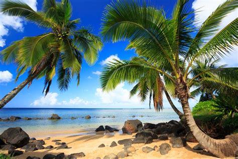 Hawaii: chicche e curiosità - La Stampa