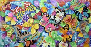 Spring – a collage of colourful butterflies Amrayi