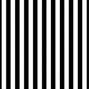 8x8FT Black White Stripes Wall Custom Vinyl Photography ...