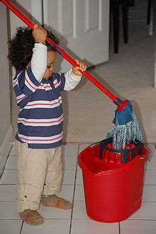 mop simple english wiktionary