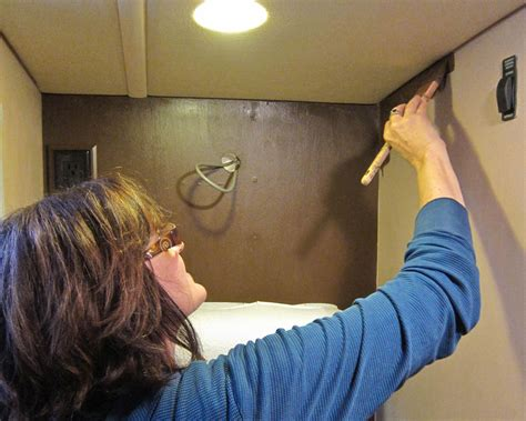 paint  vinyl walls   rv trek
