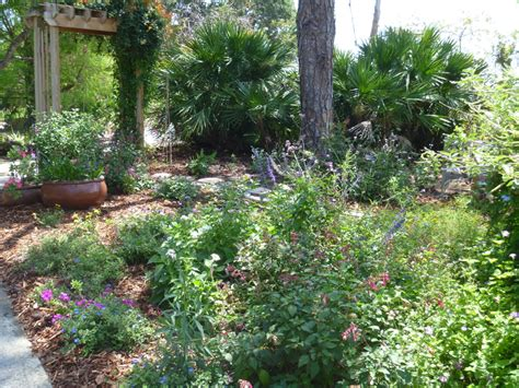 Reader Photos! A Cottage Garden In Southern Florida