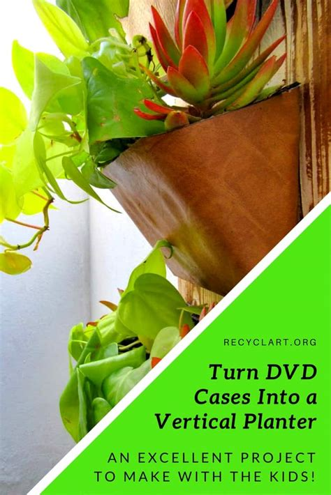 upcycled dvd case vertical garden great  indoors