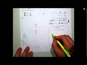 Molecular Orbital Diagram - Beryllium Hydride