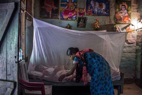 india takes  malaria   highest burden state