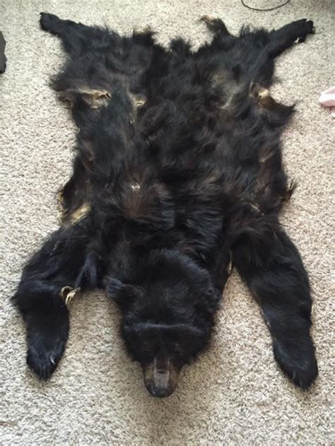 black bear headdress aftcra