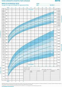 Cdc Growth Chart Girls Boys Growth Chart Template Free Download Speedy Template