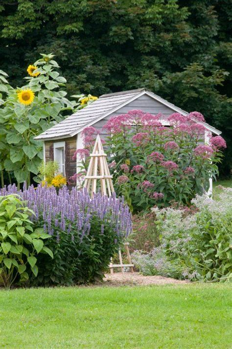 Country Cottage Garden And Shed In Country Gardens