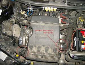 Fiat 600  2004 Seicento