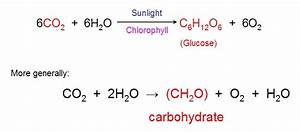 Balanced Equation For Photosynthesis In Words And Symbols ...