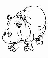 Hippo Coloring sketch template
