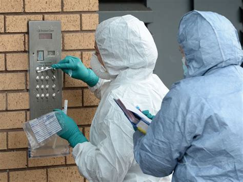 Cuts in forensics teams damages fight against crime ...