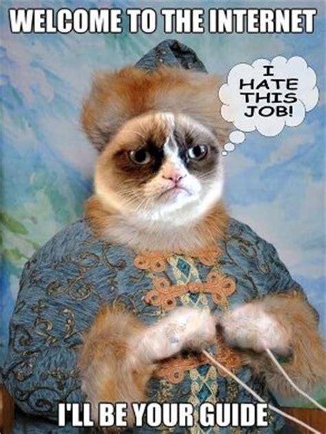 Cat Internet Meme - 20 ways to make family tech talk night fun pto today