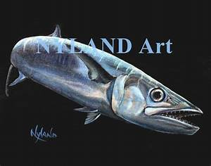 King Mackerel Kingfish Print V.E. Series Fish Art – Nyland Art
