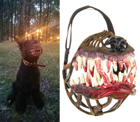 muzzle dog angry zombie looks werewolf scary terrifying human he dogs geekologie pitbull wiener halloween muzzles cool russian into costumes