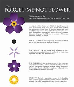 Armenian Genocide 100th year Forget Me Not Anmoruk gold ...