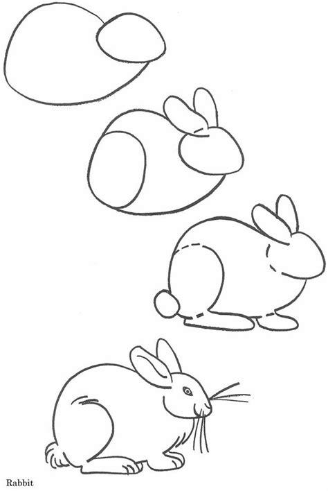 konijn thema leren tekenen pinterest   draw