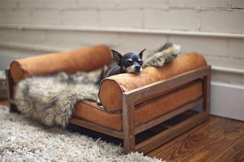 Unverschämte Attraktive Möbel Für Haustiere Aequivalere