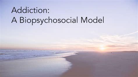 addiction  biopsychosocial model