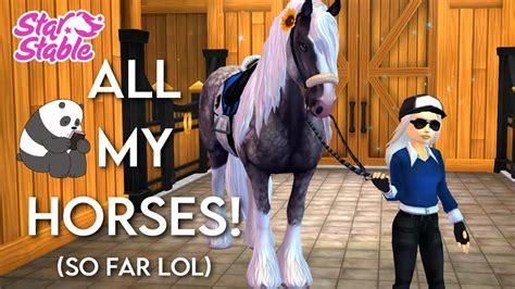 sso horses stable star