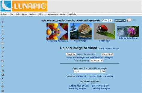 Free Form Crop Image Online by Lunapic Alternatives And Similar Software Alternativeto Net