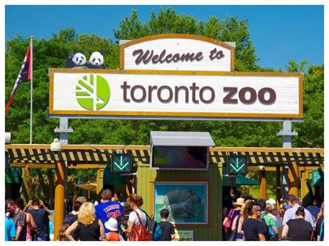 Toronto Zoo | Toronto, Ontario | New York by Rail